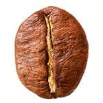 grano-cafe-robusta